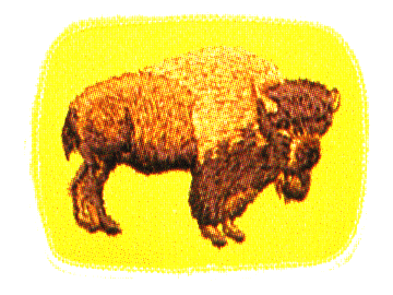 Buffalo Patrol crest