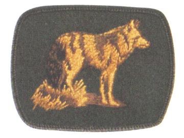 Coyote Patrol crest