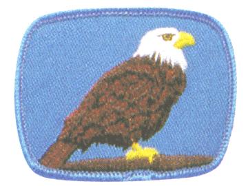 Eagle Patrol crest