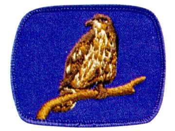 Hawk Patrol crest