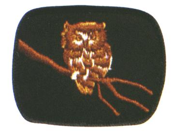 Owl Patrol crest